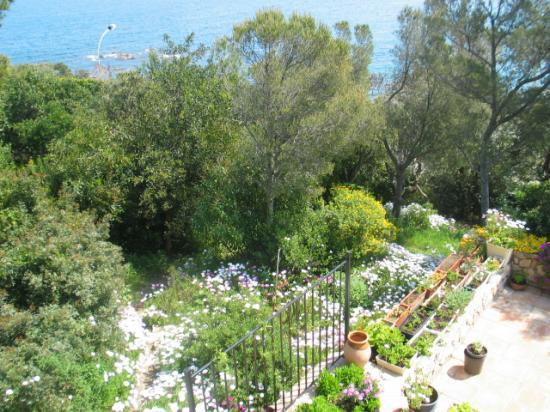 La terrasse de la piscine au mois de Mai