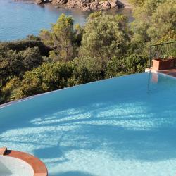 L'espace piscine au milieu de la pinède