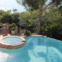 Le spa (2 jets), la piscine